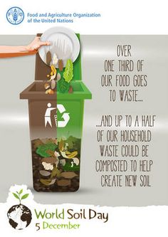 Over of our food goes to waste.and up to half of our household waste could be composted to help create new soil. Environmental Posters, Un Sustainable Development Goals, Waste Art, Textile Pattern Design, Food Technology, Kitchen Waste, Yard Waste, Garden Soil, At Least