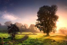 Stephen Emerson: Enchanted Abbey, Downpatrick, County Down, Northern Ireland