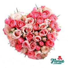 The heart of 17 pink miniroses