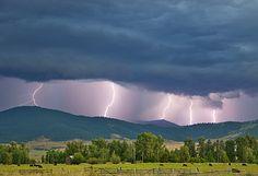 Livestock - Multiple lightning strikes along a ridgetop produced by a strong thunderstorm / Jocko Valley, near Arlee, Montana, USA.