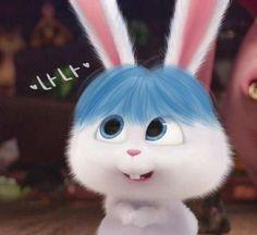 Cute Bunny Cartoon, Cute Cartoon Pictures, Cartoon Pics, Cute Cartoon Wallpapers, Cute Images, Rabbit Wallpaper, Bear Wallpaper, Cute Disney Wallpaper, Wallpaper Iphone Cute