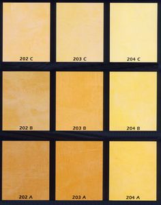 Popular Stucco Colors | Home Company Where we are Fairs Contact us
