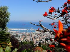 #Israel #Haifa  Port of Haifa #view #BahaiGardens