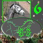 Türchen+6+-+Die+Zeit+der+Geschenke+und+der+Anbetung+-+Fröhlichen+Nikolaus!