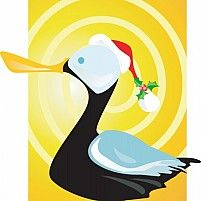 Illustration Of A black duck as Santa with covered eyes and peculiar wings