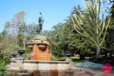 Royal Botanic Gardens - ogrody botaniczne w Sydney.  #travel #podróże #sydney #australia