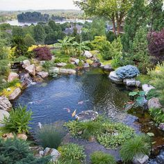 An amazing pond with an amazing view! Created by Modern Design Aquascaping in Friendsville, TN. #beautifulbackyards #pond #backyardpond #landscaping #watergarden #fishpond