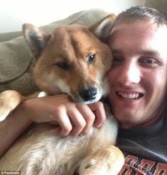 Deployed Soldier's Ex-Girlfriend Sold His Shiba Inu on Craigslist | Dogster