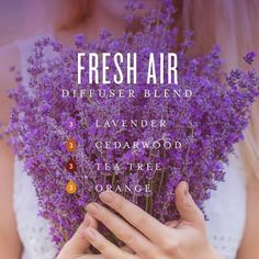 Discover the large variety of products for your healthy home and body that Young Living sells. Essential Oils Guide, Doterra Essential Oils, Essential Oil Uses, Cedarwood Essential Oil, Yl Oils, Aromatherapy Oils, Aromatherapy Recipes, Young Living Oils, Young Living Essential Oils