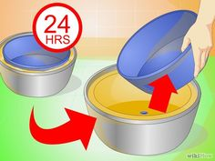 Image intitulée Make Concrete Flower Pots Step 8
