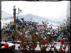 Stazione Meteo Rivalba sotto la neve by Michele Scirpoli | Copyright © All rights reserved ®