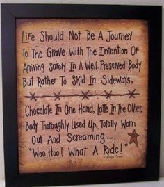 Life Should Not be a Journey to the Grave skid in by trimblecrafts, $24.99