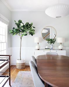 """3,175 Likes, 166 Comments - Erin Wheeler (@sunnycirclestudio) on Instagram: """"So I purchased a fake fiddle leaf fig  But! It's actually pretty good! Soo tall (6') and the…"""""""