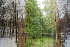 Consists of 365 photographs that were made by each day from the same place.