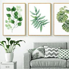 room decor Art pictures - Nordic Green Leaves Natural Simple Modern Wall Art Plant Species Canvas Pictures Posters For Kitchen Living Room or Home Office Decor Wall Art Pictures, Canvas Pictures, Office Pictures, Nursery Wall Art, Wall Art Decor, Leaf Wall Art, Green Wall Art, Green Wall Decor, Plant Painting