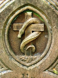 """Carl Jung: """" The purified and nourished serpent in Alchemy is the Mercurial serpent, the Ouroboros........."""""""