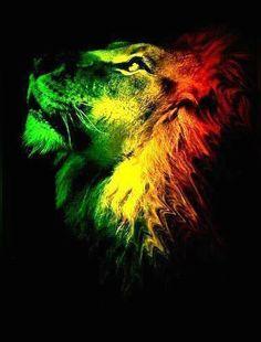Rasta Lion #UnityByRastaEmpire