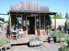 Image result for lavender store