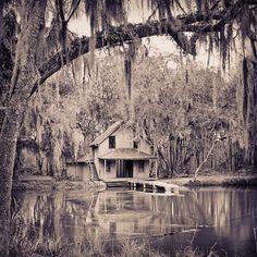 """Volusia County, Florida, circa 1904. """"De Leon Springs near DeLand."""""""