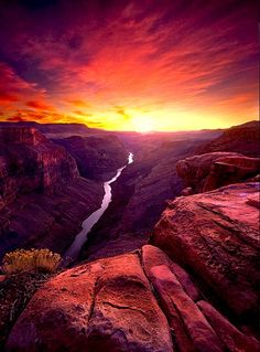 Toroweep Overlook, Grand Canyon. I have been to the Grand Canyon as a kid, but would love to go again!