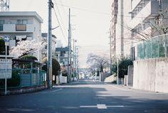 country road ++ photography : watanabe aki