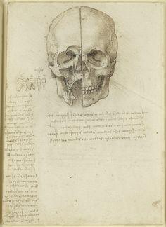 Leonardo da Vinci, 1452-1519, Italian, The skull sectioned, 1489.  Pen and ink over traces of black chalk.  Royal Collection Trust, Windsor.