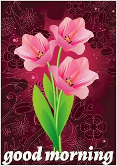 Good Morning Messages, Good Morning Greetings, Good Morning Flowers Rose, Lovely Good Night, Easy Animals, Animal Paintings, Beautiful Flowers, Animation, Plants