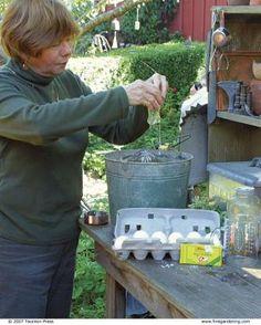35 Pest and Disease Remedies | Fine Gardening