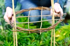 How to make willow plant supports Find out how to create homemade plant supports using willow and bamboo, with the help of our easy step by step guide, from BBC Gardeners' World Magazine. Bamboo Garden, Garden Trellis, Herbs Garden, Fruit Garden, Peony Support, Big Leaf Plants, Willow Garden, Willow Weaving, Garden Structures