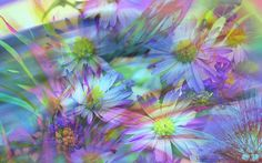 Art Abstract Pastel Green And Violet Floral Abstract Flower Green Image Gallery HD Wallpapers