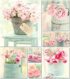 collage maria Starzyk by AT . collage maria Starzyk by AT Love Collage, Color Collage, Beautiful Collage, Beautiful Flowers, Shabby Chic Style, Shabby Chic Decor, Collages, Cheap Beach Decor, Mood Colors