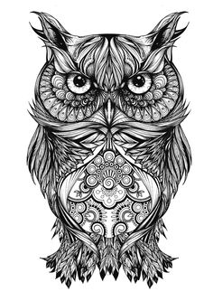 Greg Coulton Illustration 'Gregor The Owl'