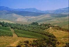 Polizzi Generosa - Agriturismo Ferienwohnungen im Agriturismo