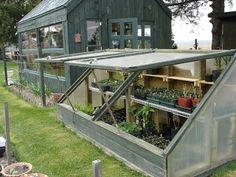 greenhouse made from old windows | Here's a simply-made coldframe she attached to the back of her ...