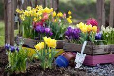 Výsledek obrázku pro spring garden