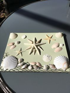 Shell treasures on canvas