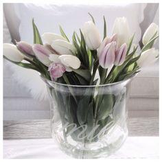 Riviera Maison * Tulips*