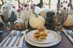 TWINK + SIS HALLOWEEN DINNER PARTY — Twink + Sis #tablescape #chestnut #classicparty #placesetting #borrowedblu #blackflatware #pumpkins #whitepumpkins #raven #potterybarn