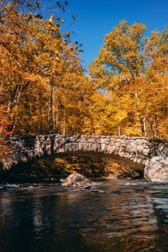 Rock Creek, Bridge Design, Day Trip, Bouldering, Washington Dc, Places To See, The Good Place, Autumnal, Park