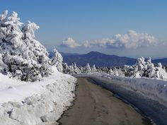 Troodos mountains, Cyprus | Flickr - Photo Sharing!
