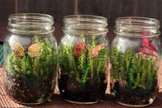 cutest little mason jars from a woodland themed baby shower {via life rearranged} Woodland Party, Woodland Theme, Forest Party, Fairy Baby Showers, Forest Baby Showers, Shower Baby, Girl Shower, Garden Birthday, Fairy Birthday