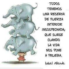 #aftermaria aquí estoy en Puerto Rico cargando elefantes  he llorado me he reído pero lo que he hecho de más es crear un camino del que me estoy enamorando mucho. Cuántos más quieren cargar elefantes? #reflexionesprofundas