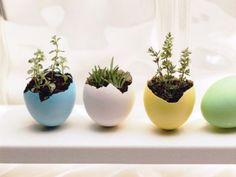 schön bepflanzte-Eierschalen bunt bemalt-ideen selber machen-tischdeko-frühling