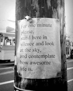 be quiet and contemplate how awesome life is.