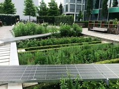 volkanerkan's Pinterest #novartis Image created at 272819689905511265 - Gallery of Novartis Physic Garden / Thorbjörn Andersson + Sweco architects - 16