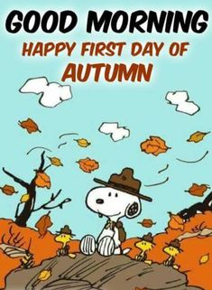 Thanksgiving Cartoon, Vintage Thanksgiving, Peanuts Cartoon, Peanuts Snoopy, Seasons In The Sun, Snoopy Comics, Snoopy Images, Snoopy Quotes, Good Morning Good Night