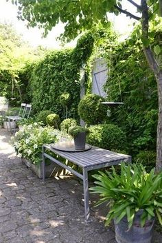 Shade Garden Ideas Starting a Shade Garden Shade Garden Ideas. The shade garden can be exploding with color and texture. No matter how much shade is in your landscape, the right flowers, plants, bu… Back Gardens, Small Gardens, Outdoor Gardens, Garden Spaces, Shade Garden, Dream Garden, Garden Inspiration, Wedding Inspiration, Garden Furniture
