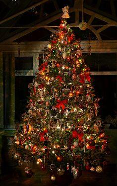 Christmas tree  ✿