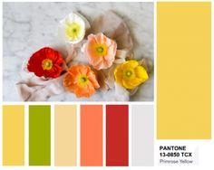 pantone 13-0755 primrose yellow
