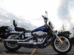 2006 Harley-Davidson DYNA LOW RIDER FXDLI LOW RIDER FXDLI - 16870754 - 42